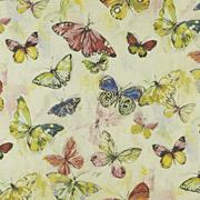 PT Mardi Gras Butterfly 264