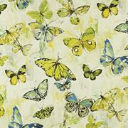 PT Mardi Gras Butterfly 391