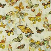 PT Mardi Gras Butterfly 457