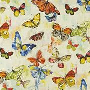 PT Mardi Gras Butterfly 522