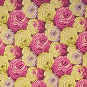 Desert Rose 67501