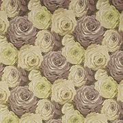 Desert Rose 67521