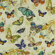 PT Mardi Gras Butterfly 675